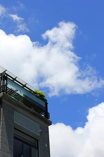 星滿意竹的陽台