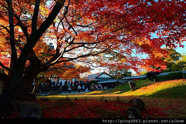 20141127京都賞楓第五天 645 (1024x683).jpg