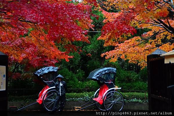 20141125京都賞楓第三天 080 (1024x683).jpg