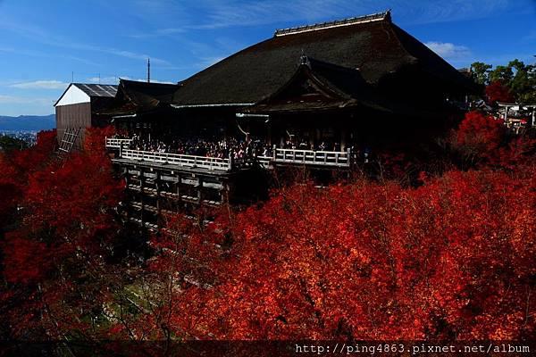 20141127京都賞楓第五天 465 (1280x853).jpg