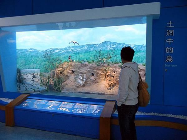 金門 ─ 雙鯉濕地自然中心