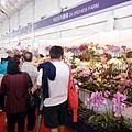 台南 ─ 2013國際蘭花展