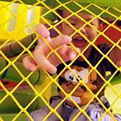 屏東環球 ─ 快樂小熊親子館
