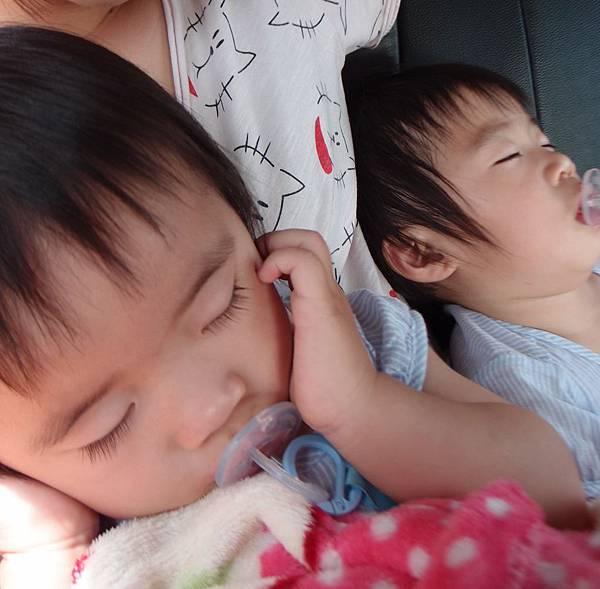 鳳山花市親子歡樂世界