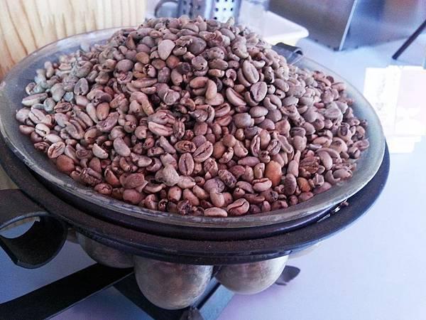 小苗苗精品咖啡