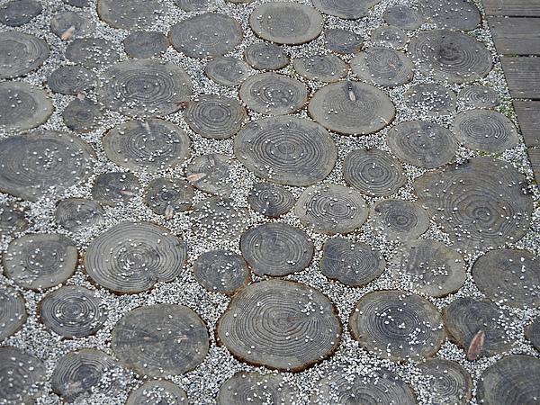 新生區 ─ 木輪地板