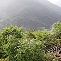 賀州玉石林