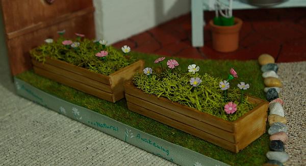 籃子裡的小花.jpg