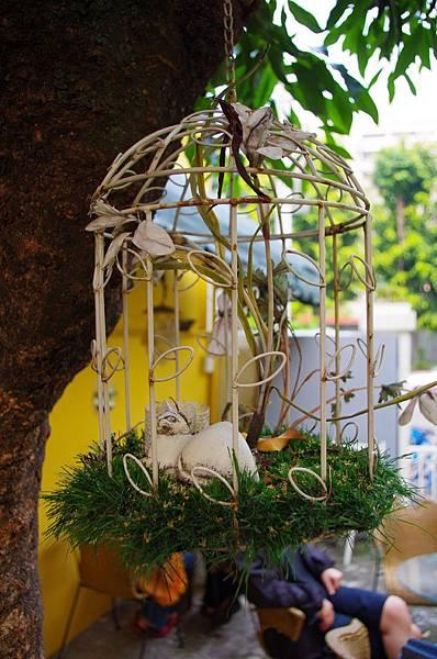 樹上的籠子.JPG