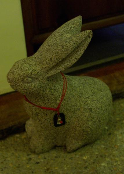 石兔.jpg