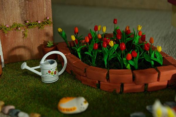 放滿鬱金香的花圃….JPG