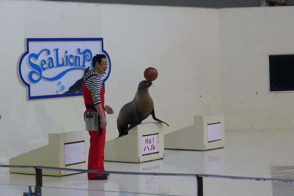 北海道DAY2 (6)