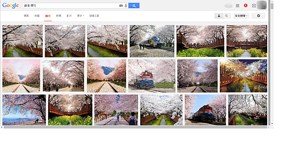 鎮海 櫻花 Google 搜尋