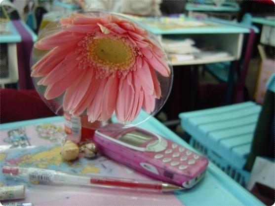 粉紅手機.jpg
