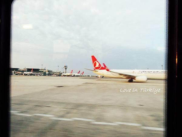 土耳其航空TK25 (34).jpg