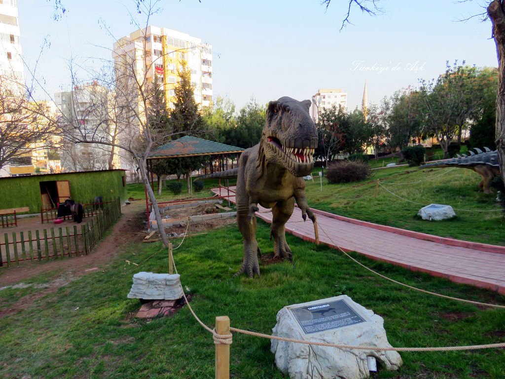 Doğal Park  (6).jpg