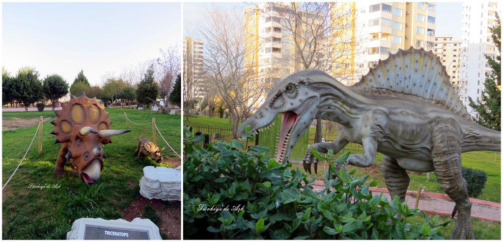 Doğal Park  (16).jpg