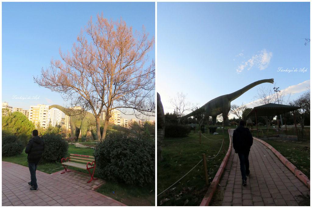Doğal Park  (17).jpg