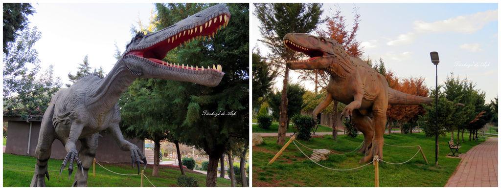 Doğal Park  (19).jpg