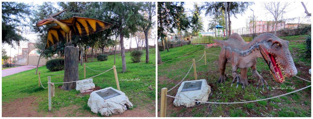 Doğal Park  (18).jpg