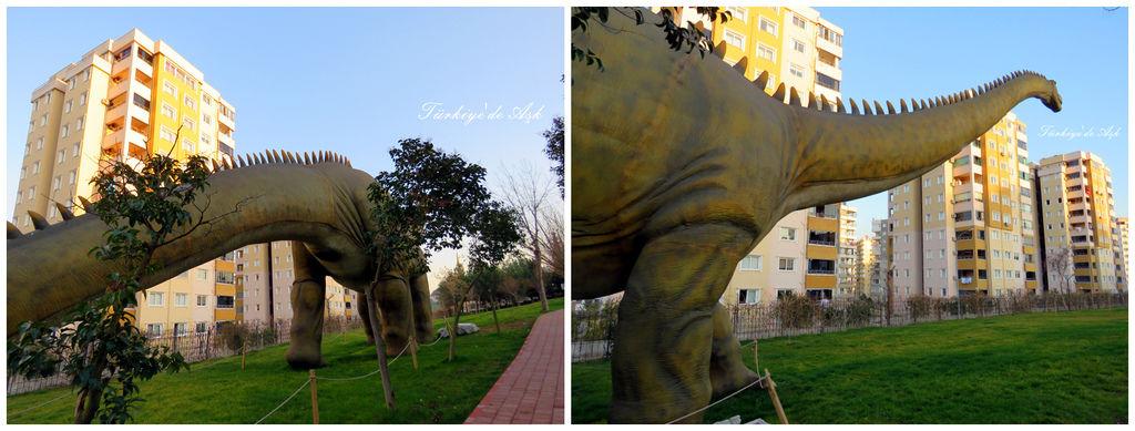 Doğal Park  (26).jpg