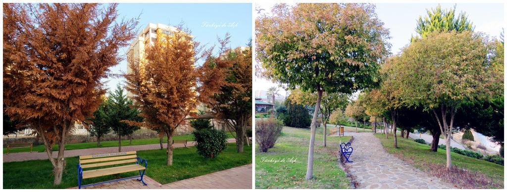 Doğal Park  (25).jpg