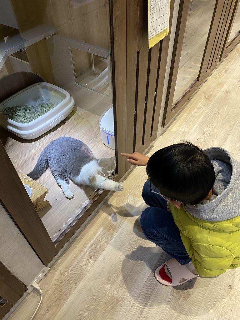 牧貓精品寵物旅館 竹北二館