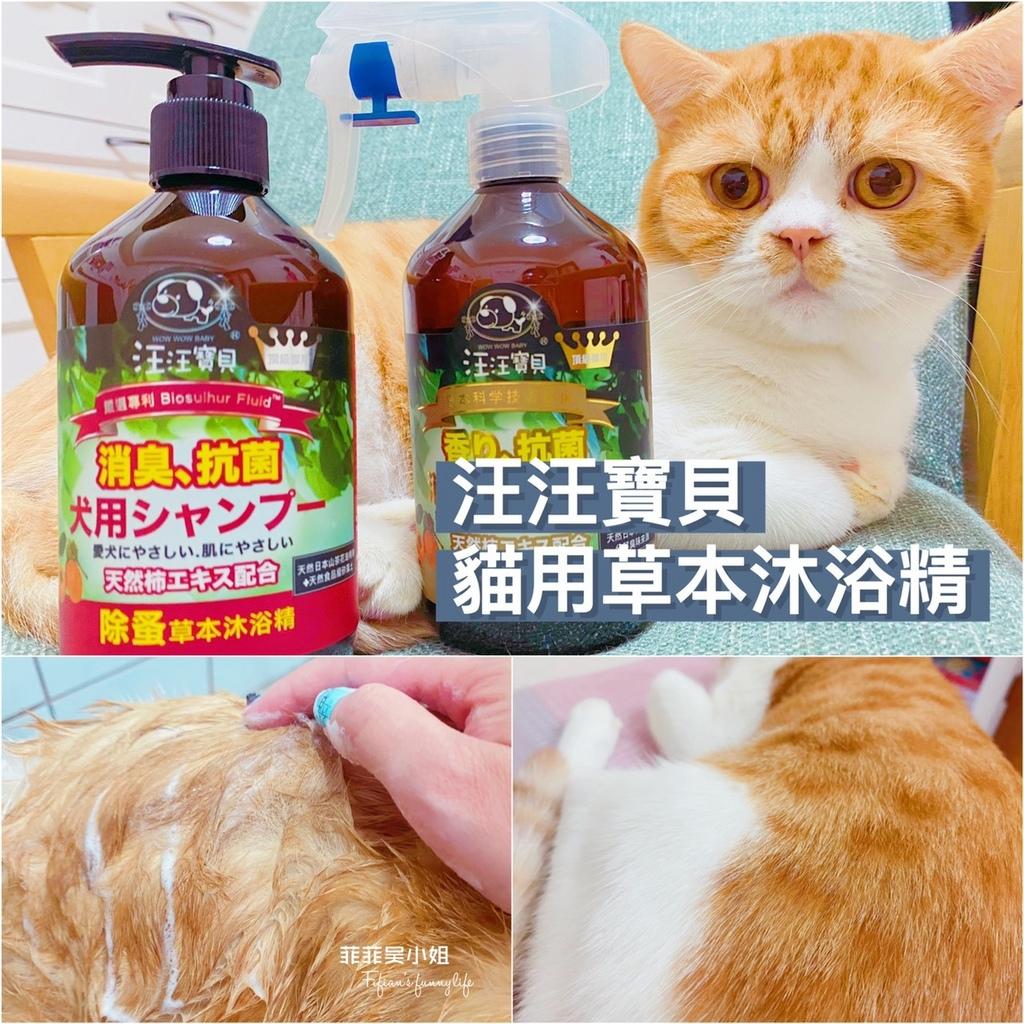 貓咪洗毛精推薦_汪汪寶貝