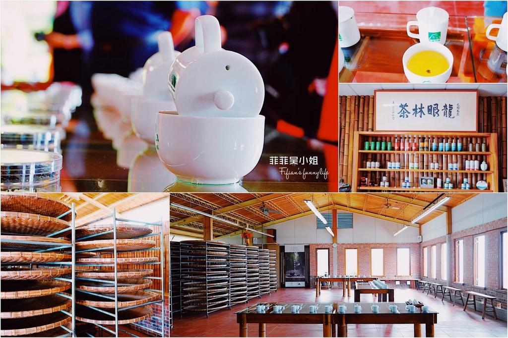 嘉義梅山精緻旅遊 龍眼林茶工場 如何喝出冠軍茶的祕密 體驗比賽茶等級的評鑑方式