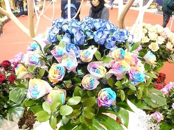 七彩玫瑰花
