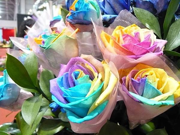 五彩繽紛玫瑰花