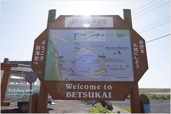 釧路43.jpg
