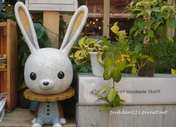 小花花的小兔.JPG