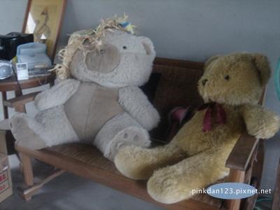 有伴的熊.JPG
