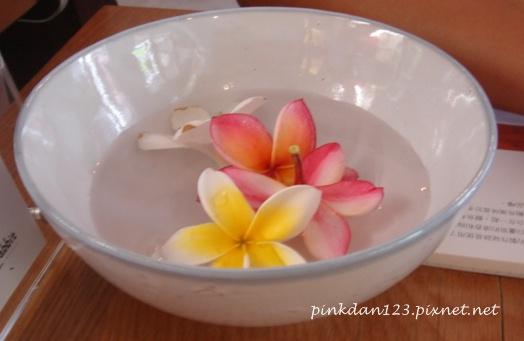 桌上的雞蛋花.JPG