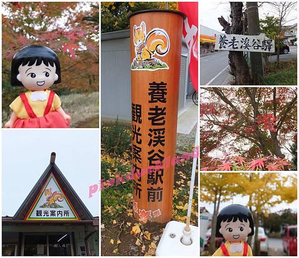 2015十一月秋末賞楓 D6-1市原養老溪谷駅賞楓(紅葉狩り)