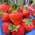 哇~香水草莓