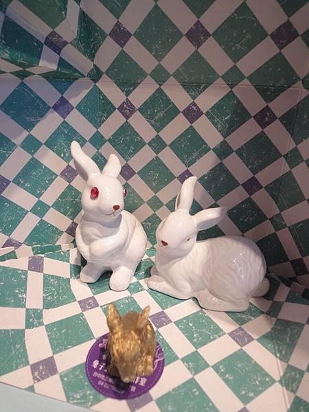 超紅眼兔子