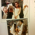 The Twilight Saga The Complete Film Archive(19)