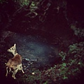 instagram-2013-06-02(2)