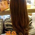 DSC05937.jpg
