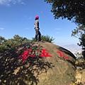 line_159610243323953.jpg