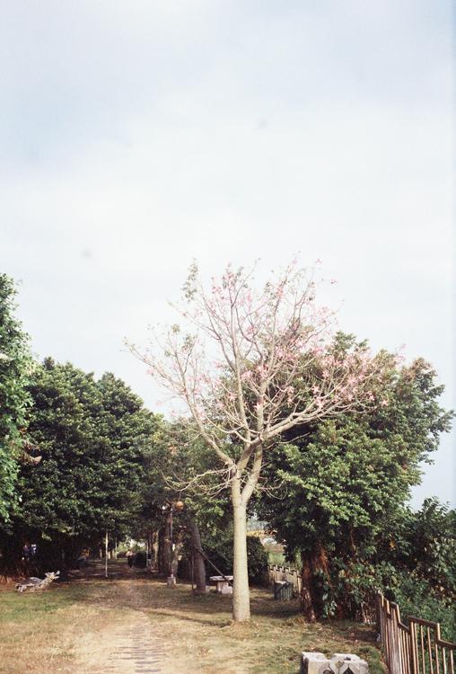 r001-028