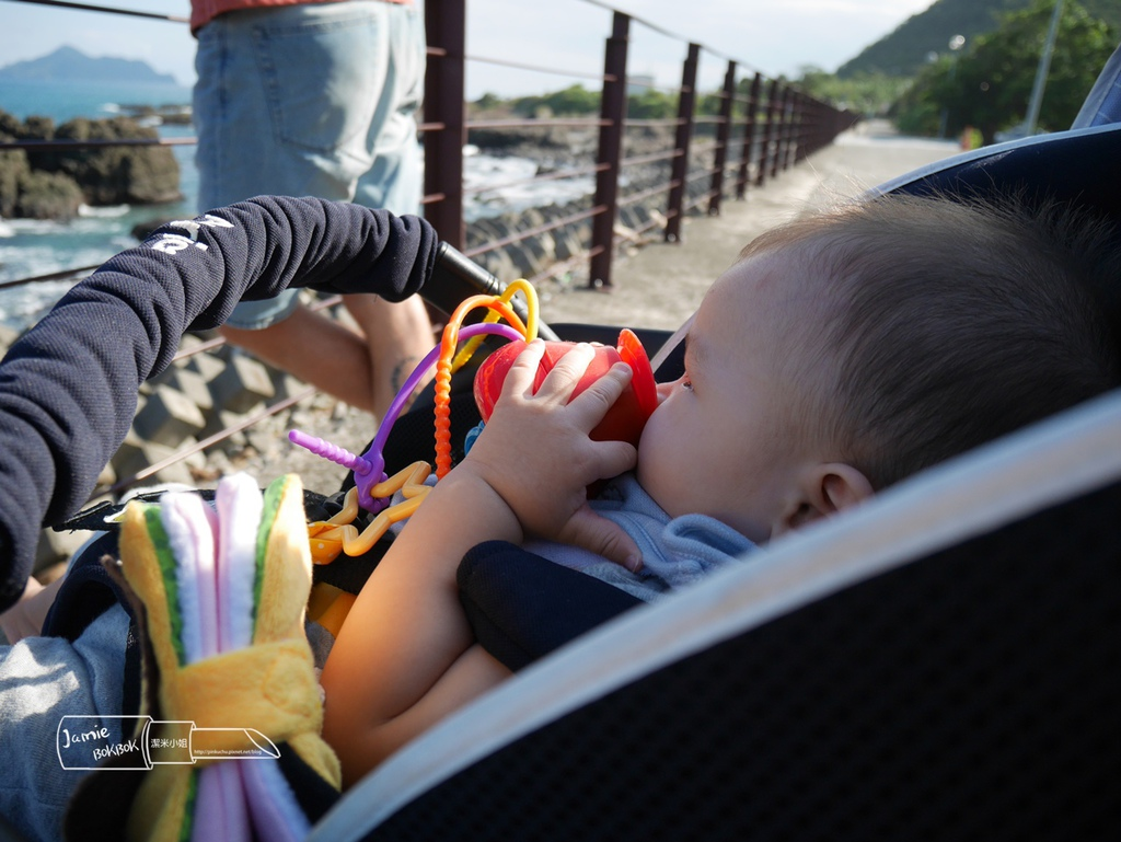 攜帶型 嬰兒 安全椅套 Grapple 玩具吸盤 LAVIDA育兒好好玩