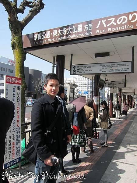 奈良斑鳩-15