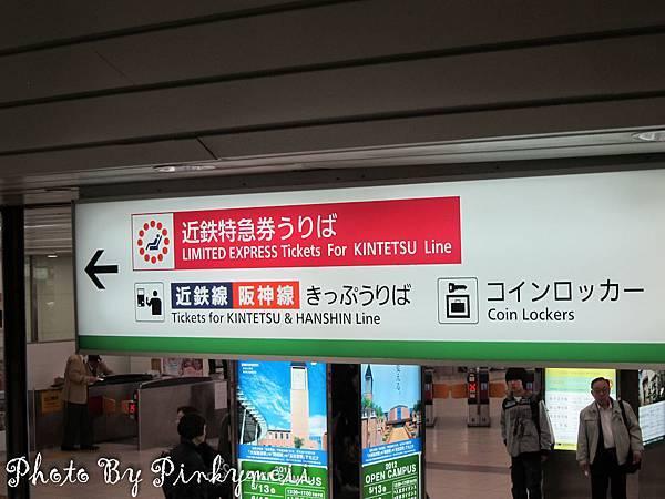 奈良斑鳩-6