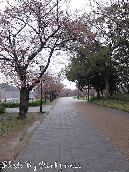 大阪城-10