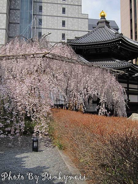 京都-24
