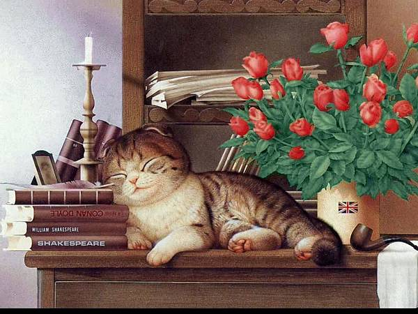 cat029.jpg