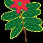 花與葉子.png
